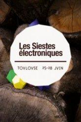siestes-electroniques-2009