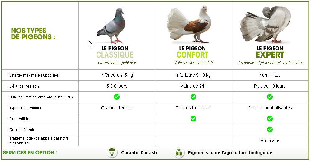 ldlc-pigeons-voyageurs